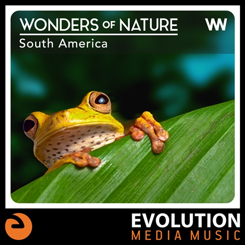 ¡Nueva música! The sounds of nature, South America style.